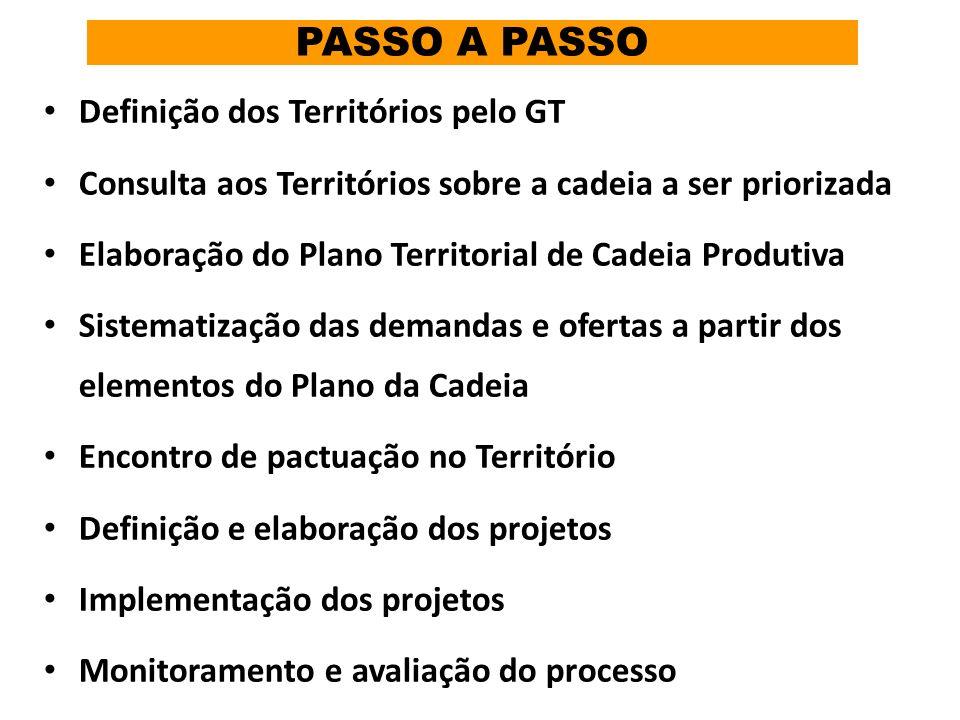 PASSO A PASSO Definição dos Territórios pelo GT