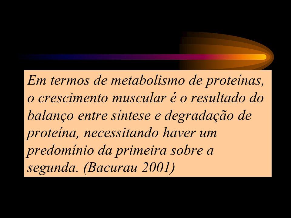 Em termos de metabolismo de proteínas, o crescimento muscular é o resultado do balanço entre síntese e degradação de proteína, necessitando haver um predomínio da primeira sobre a segunda.