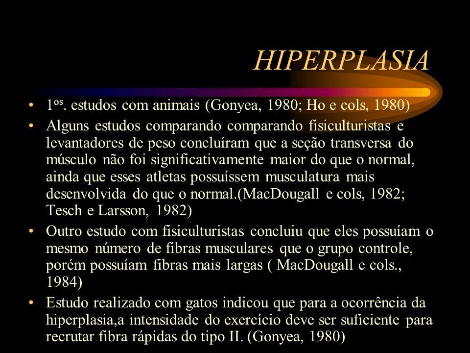 HIPERPLASIA 1os. estudos com animais (Gonyea, 1980; Ho e cols, 1980)