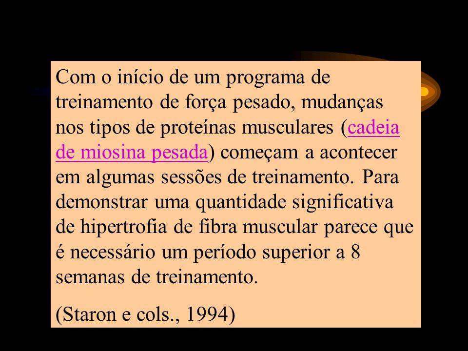 Com o início de um programa de treinamento de força pesado, mudanças nos tipos de proteínas musculares (cadeia de miosina pesada) começam a acontecer em algumas sessões de treinamento. Para demonstrar uma quantidade significativa de hipertrofia de fibra muscular parece que é necessário um período superior a 8 semanas de treinamento.