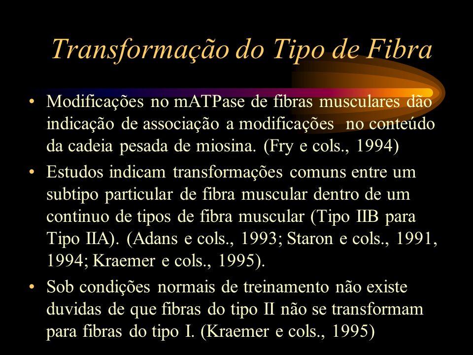 Transformação do Tipo de Fibra