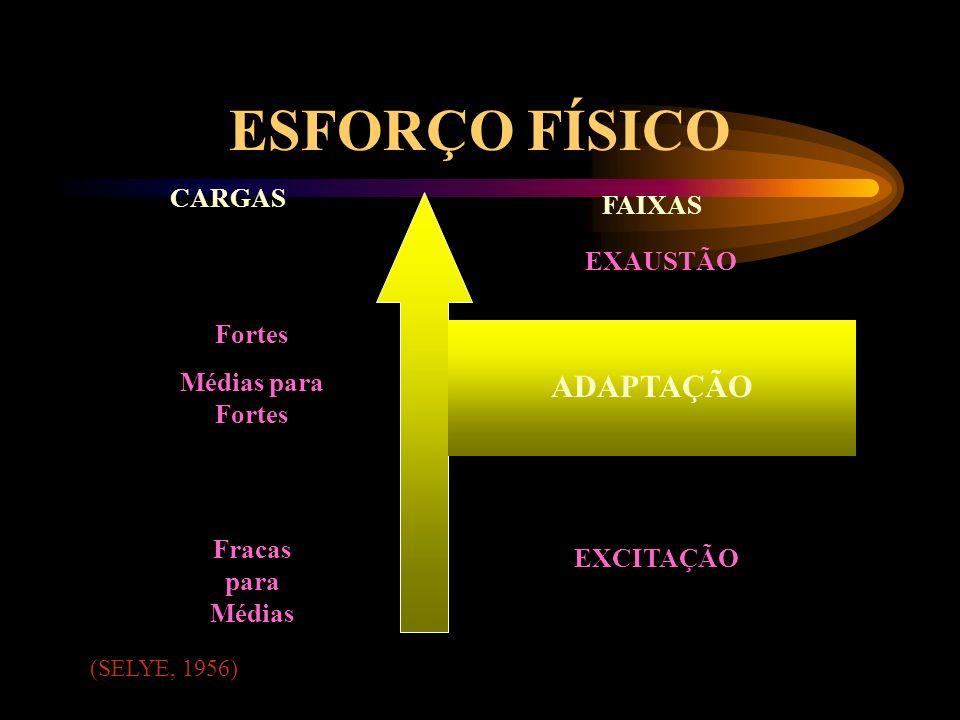 ESFORÇO FÍSICO ADAPTAÇÃO CARGAS FAIXAS EXAUSTÃO Fortes