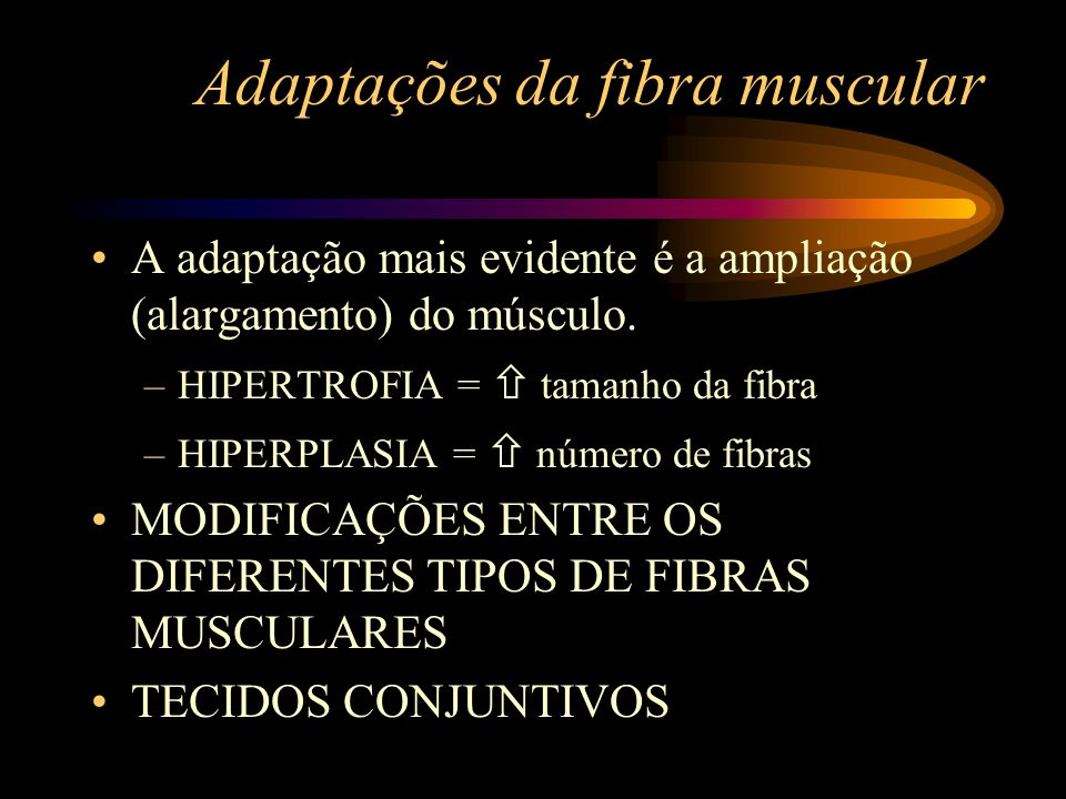 Adaptações da fibra muscular