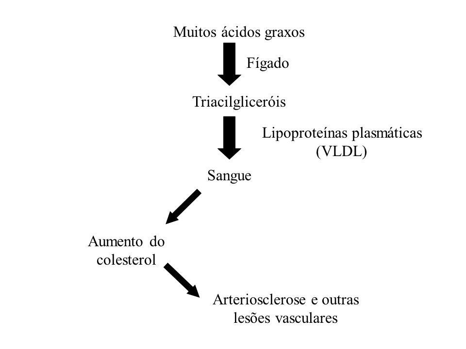 Lipoproteínas plasmáticas (VLDL)