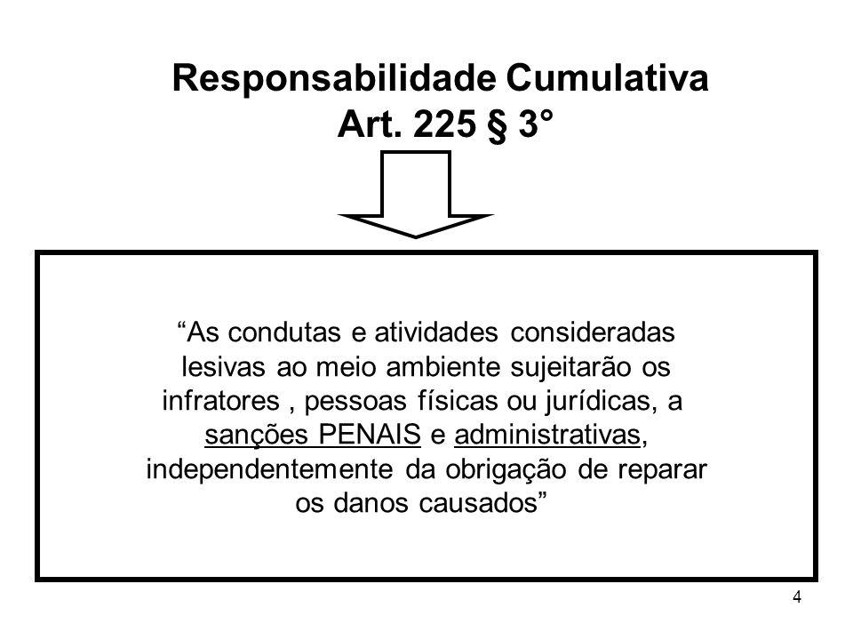 Responsabilidade Cumulativa Art. 225 § 3°