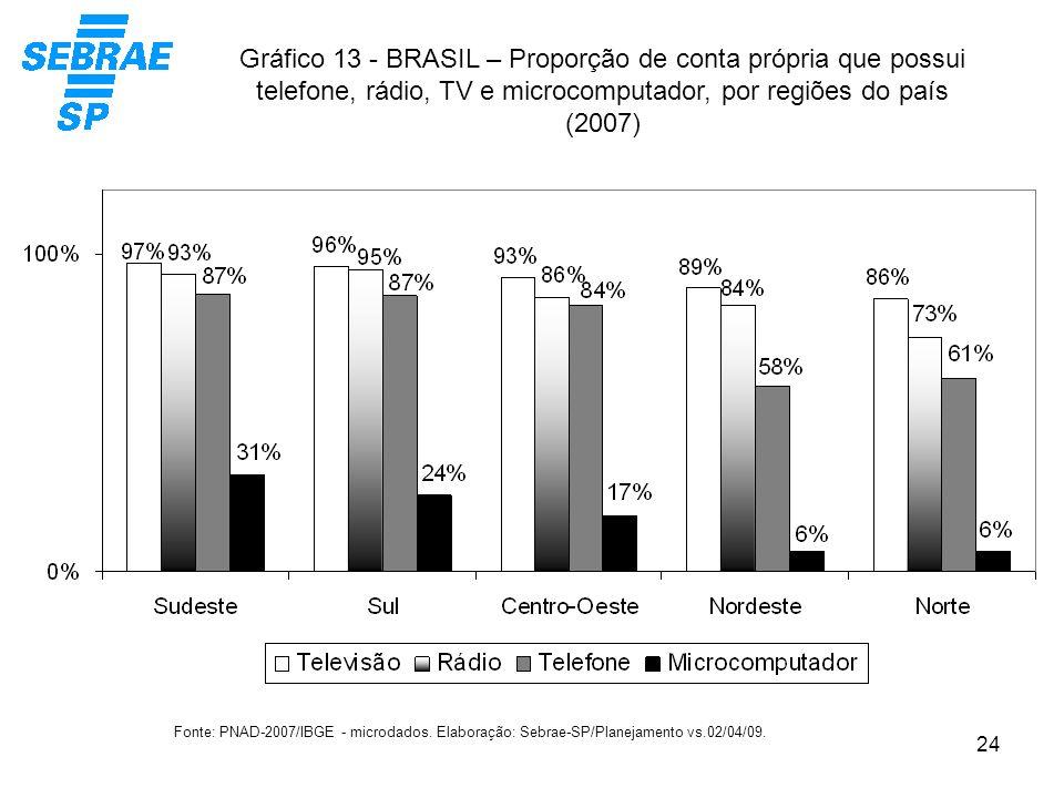 Gráfico 13 - BRASIL – Proporção de conta própria que possui telefone, rádio, TV e microcomputador, por regiões do país (2007)