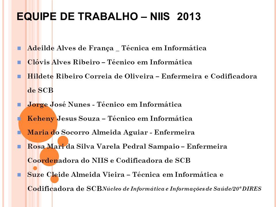 EQUIPE DE TRABALHO – NIIS 2013