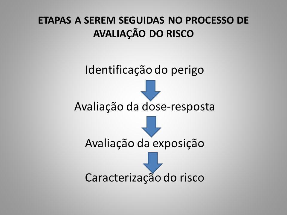 ETAPAS A SEREM SEGUIDAS NO PROCESSO DE AVALIAÇÃO DO RISCO