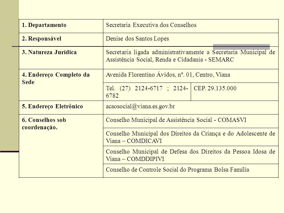 1. Departamento Secretaria Executiva dos Conselhos. 2. Responsável. Denise dos Santos Lopes. 3. Natureza Jurídica.