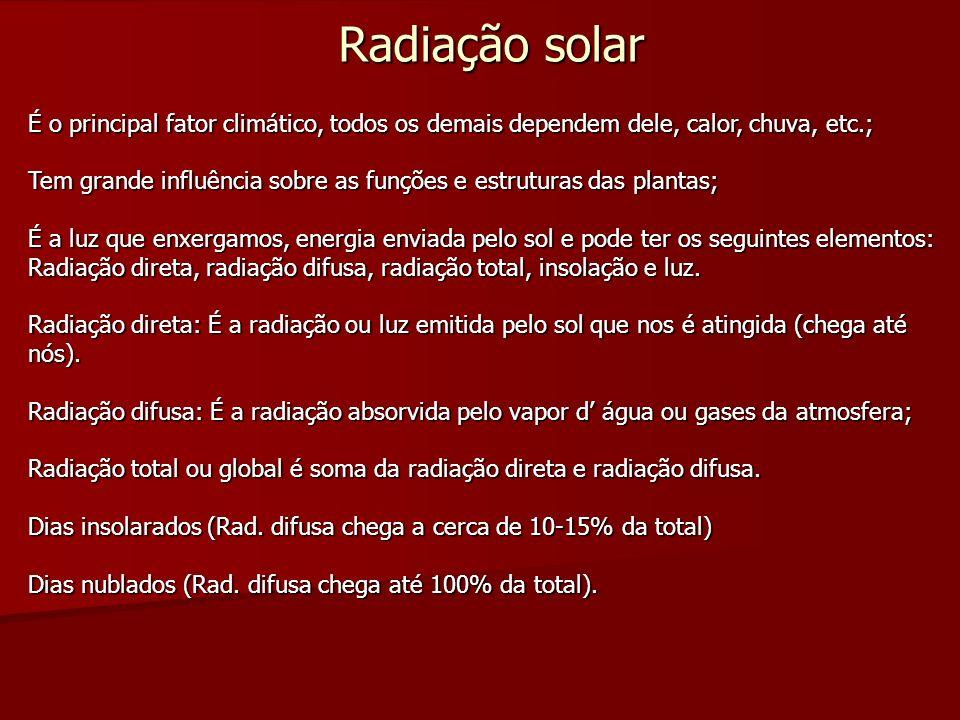 Radiação solar É o principal fator climático, todos os demais dependem dele, calor, chuva, etc.;