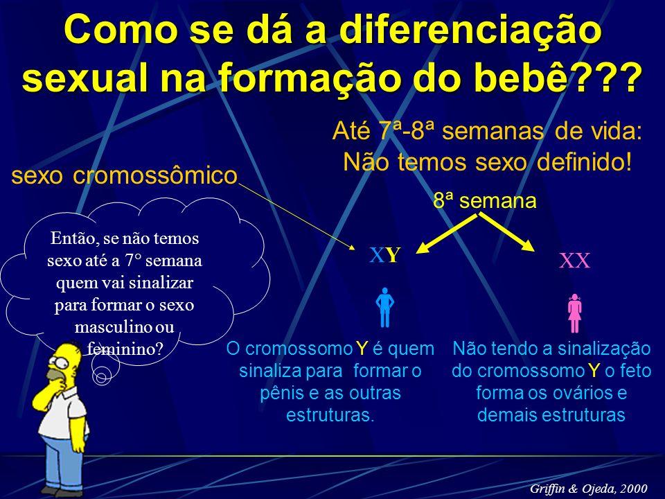 Como se dá a diferenciação sexual na formação do bebê