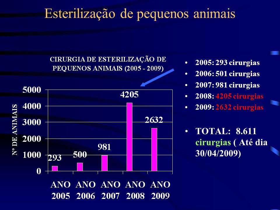 Esterilização de pequenos animais