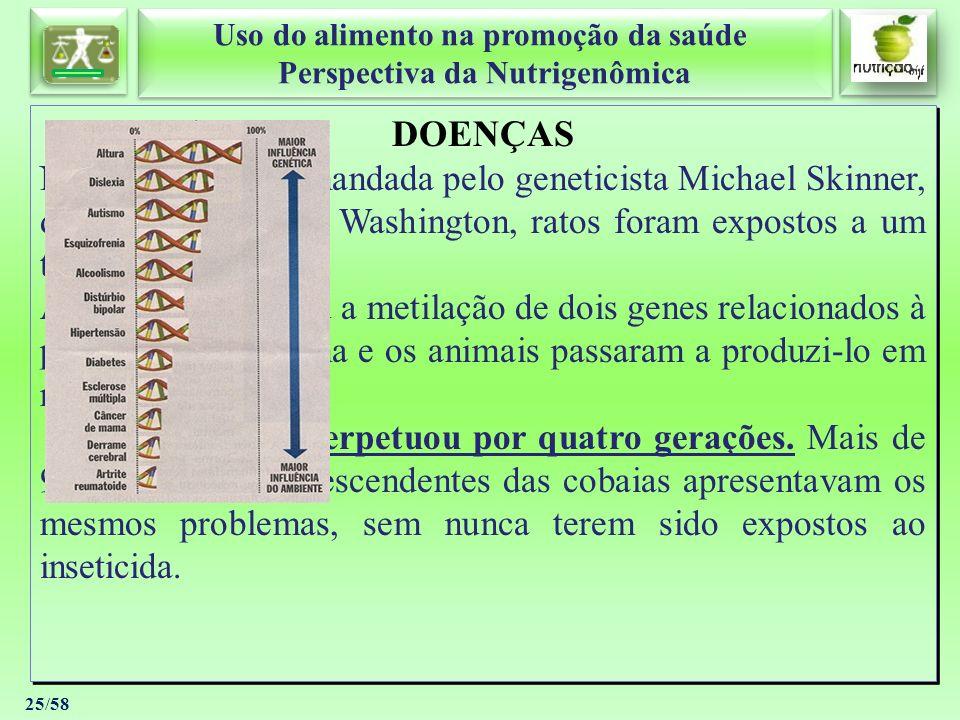 DOENÇAS Numa pesquisa comandada pelo geneticista Michael Skinner, da Universidade de Washington, ratos foram expostos a um tipo de inseticida.