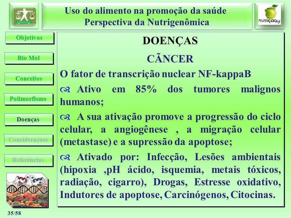 DOENÇAS CÃNCER O fator de transcrição nuclear NF-kappaB