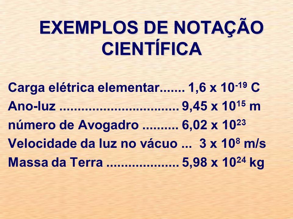 EXEMPLOS DE NOTAÇÃO CIENTÍFICA