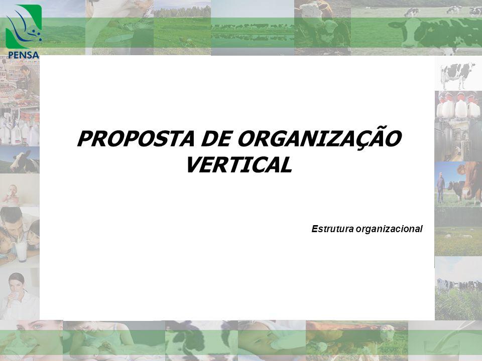 PROPOSTA DE ORGANIZAÇÃO VERTICAL