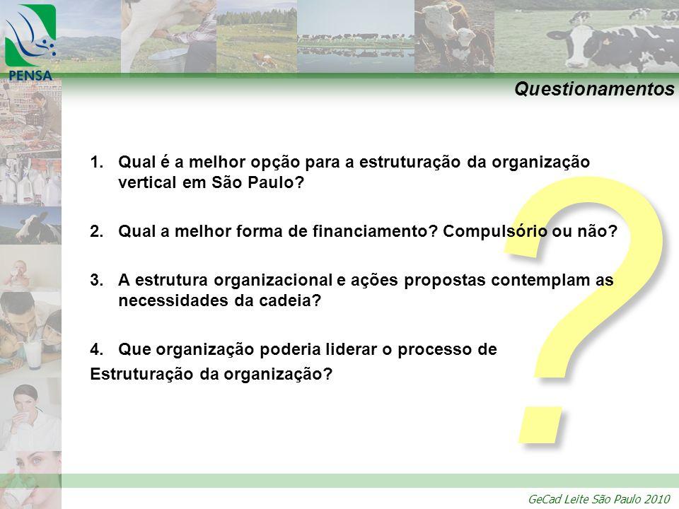 Questionamentos Qual é a melhor opção para a estruturação da organização vertical em São Paulo