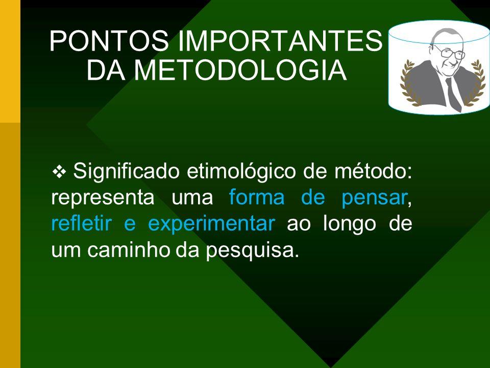 PONTOS IMPORTANTES DA METODOLOGIA
