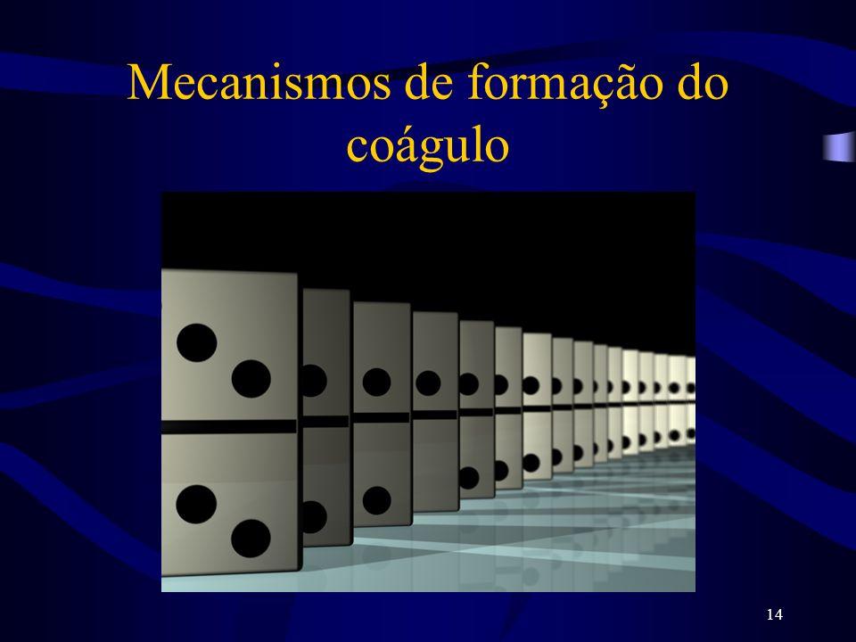 Mecanismos de formação do coágulo