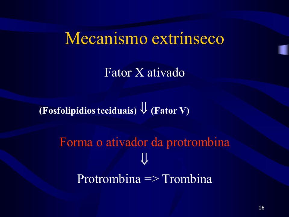 Mecanismo extrínseco Fator X ativado Forma o ativador da protrombina 