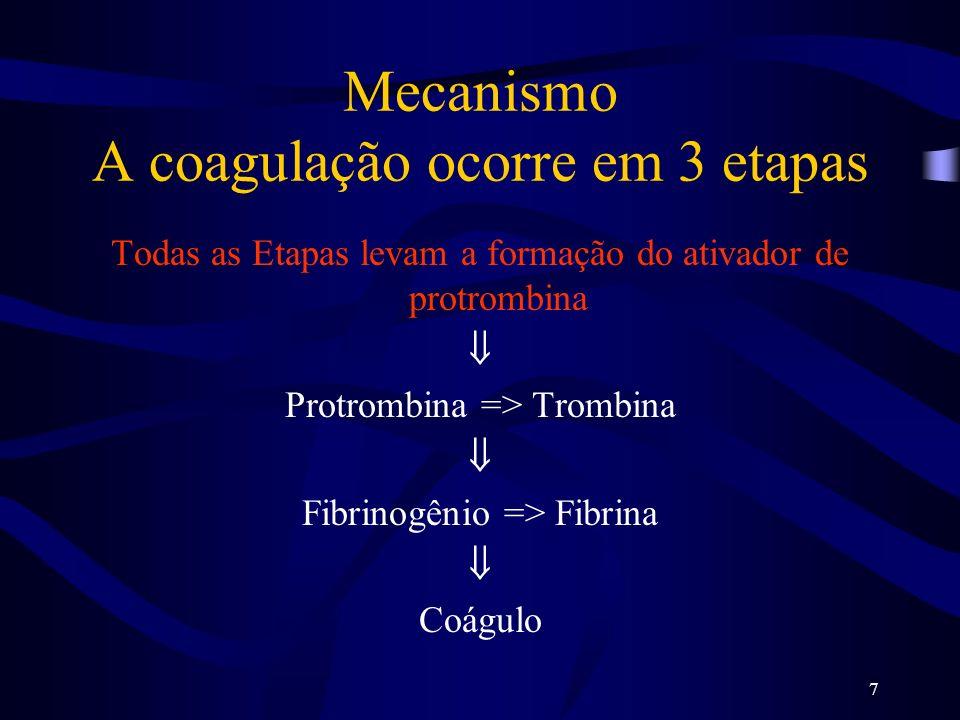 Mecanismo A coagulação ocorre em 3 etapas