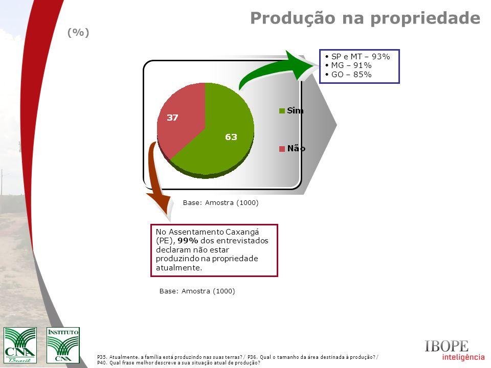 Produção na propriedade