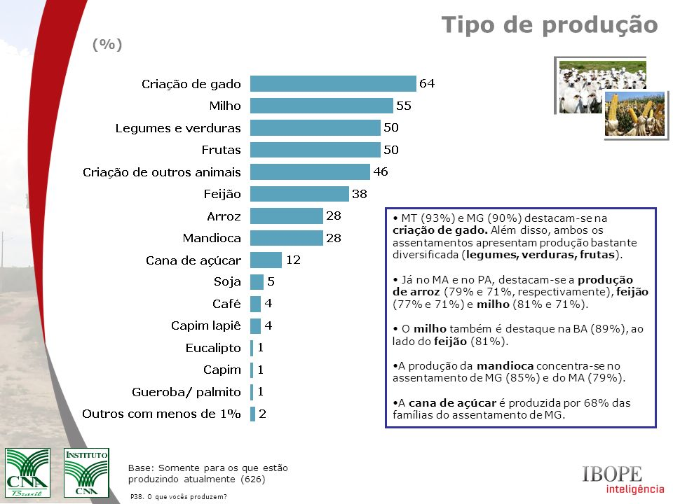 Tipo de produção (%)