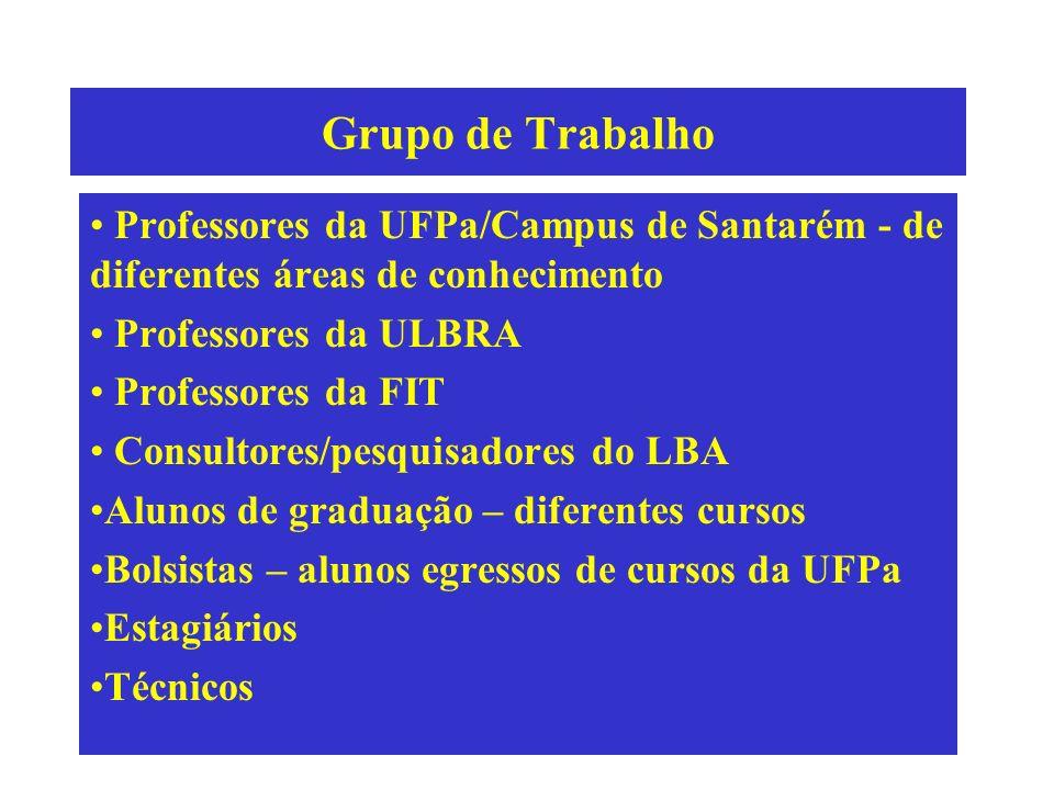 Grupo de Trabalho Professores da UFPa/Campus de Santarém - de diferentes áreas de conhecimento. Professores da ULBRA.