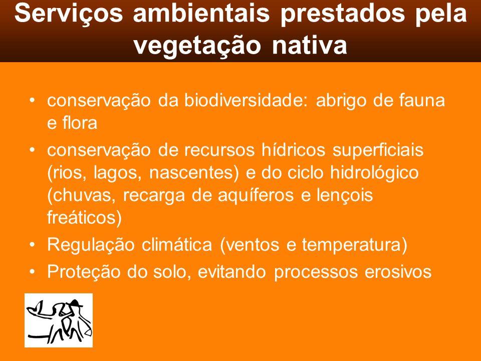 Serviços ambientais prestados pela vegetação nativa