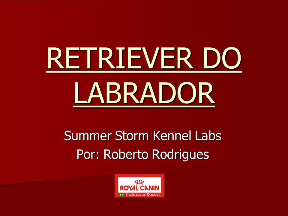 Summer Storm Kennel Labs Por: Roberto Rodrigues