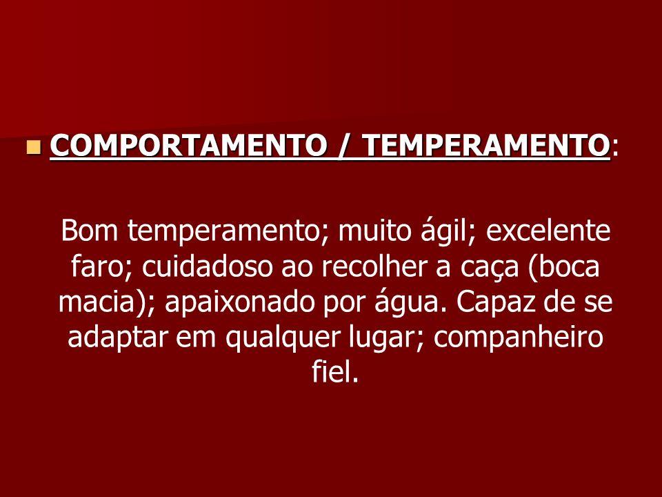 COMPORTAMENTO / TEMPERAMENTO: