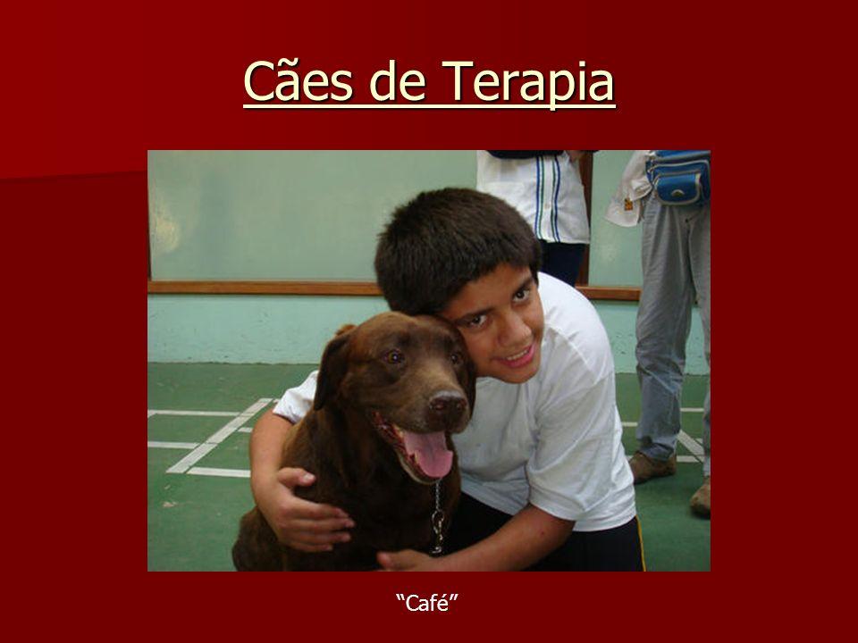 Cães de Terapia Café