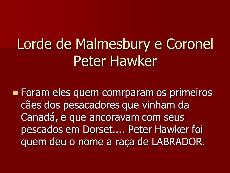 Lorde de Malmesbury e Coronel Peter Hawker