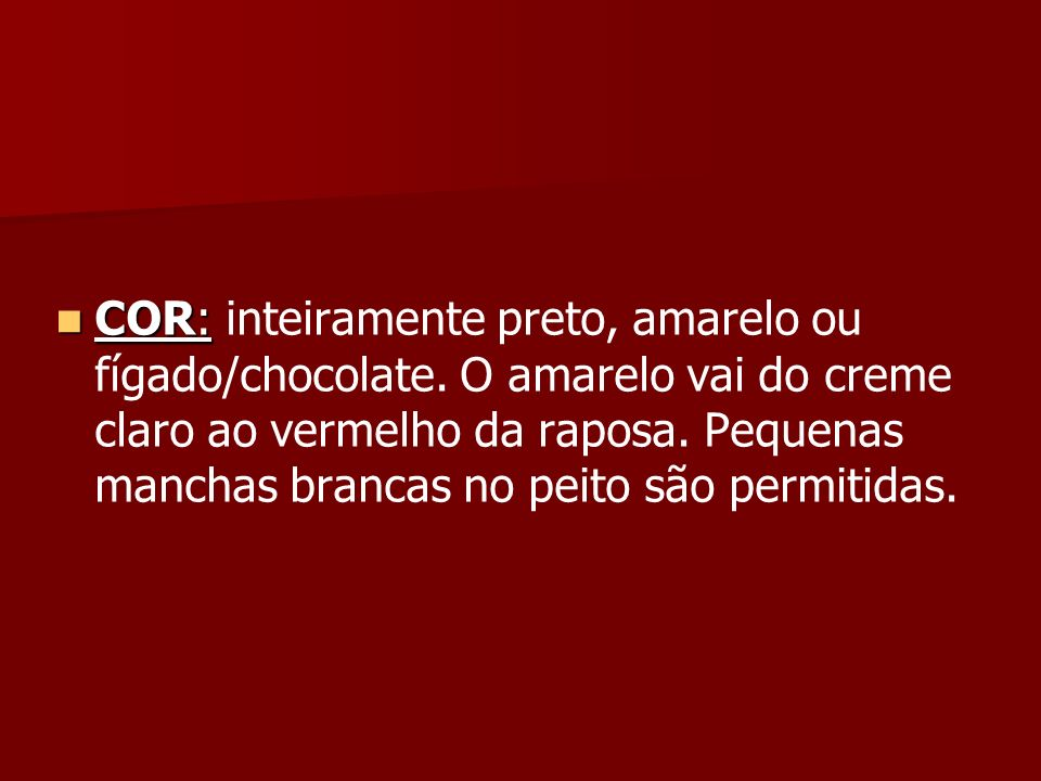 COR: inteiramente preto, amarelo ou fígado/chocolate