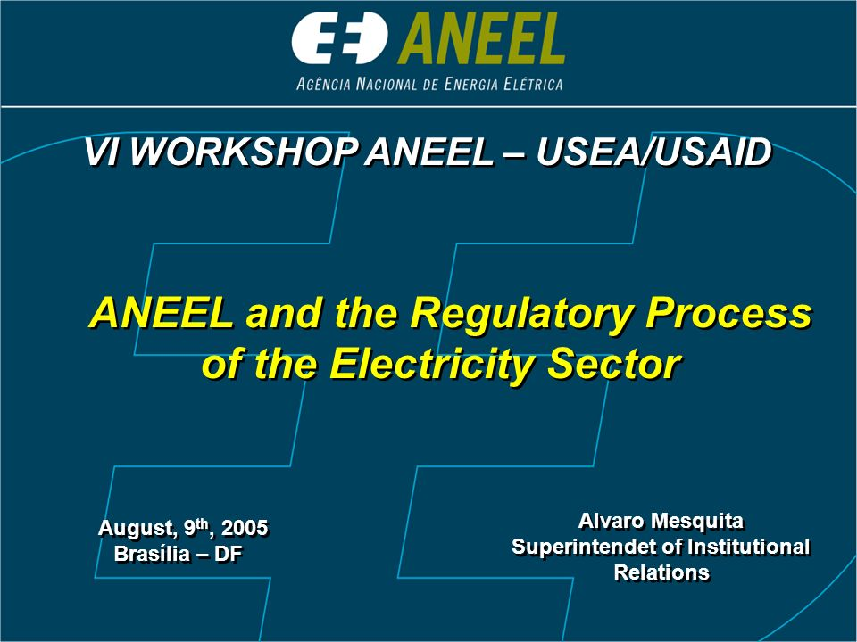 ANEEL and the Regulatory Process of the Electricity Sector