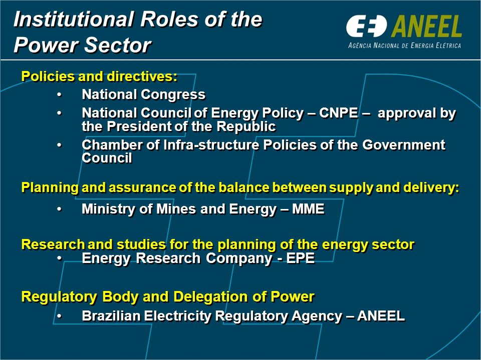 Institutional Roles of the Power Sector
