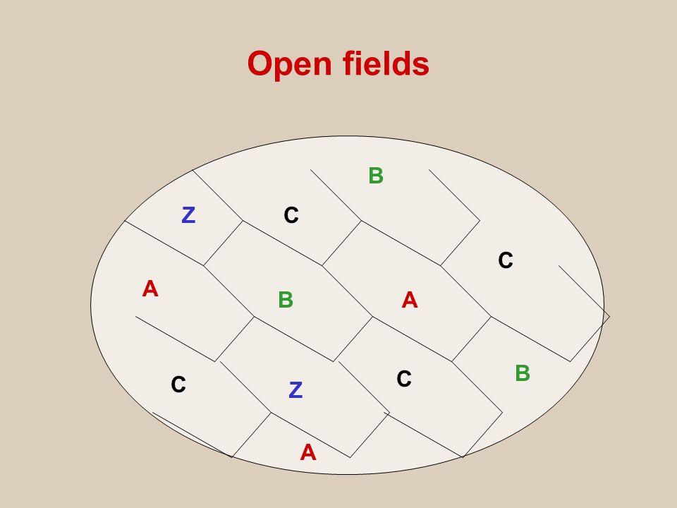 Open fields B Z C C A B A B C C Z A