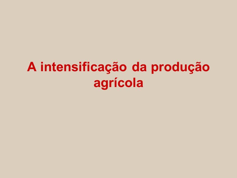 A intensificação da produção agrícola