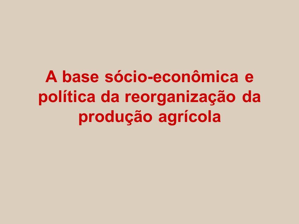 A base sócio-econômica e política da reorganização da produção agrícola