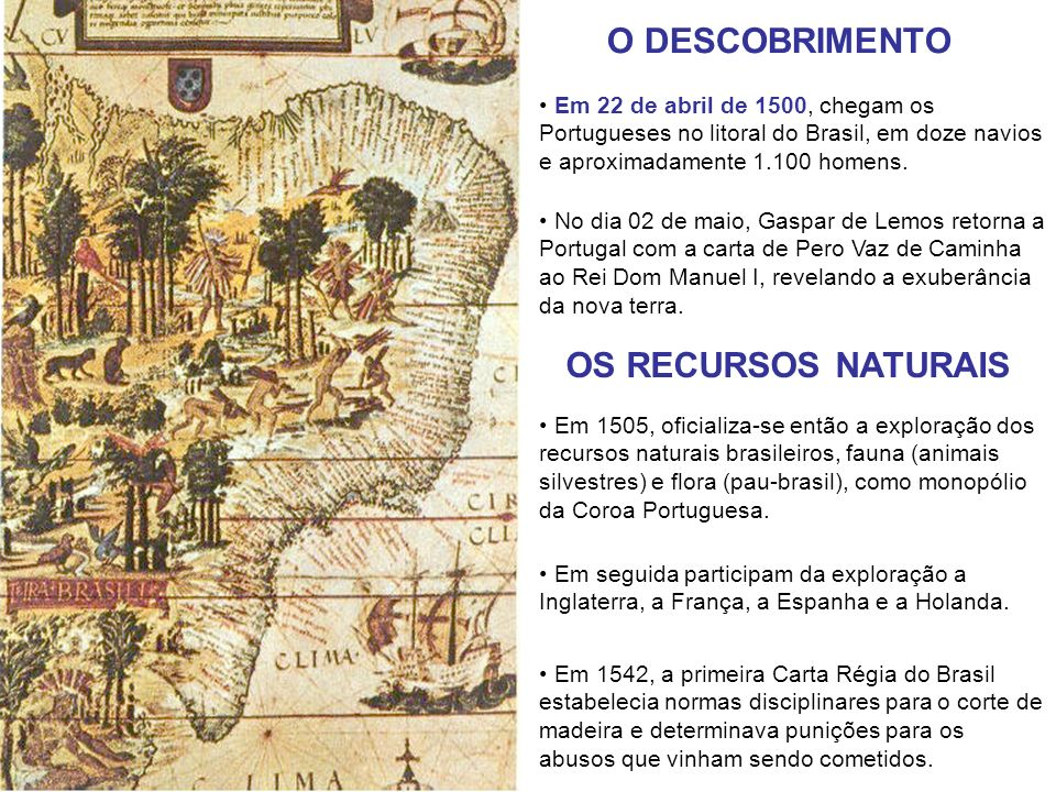 O DESCOBRIMENTO OS RECURSOS NATURAIS