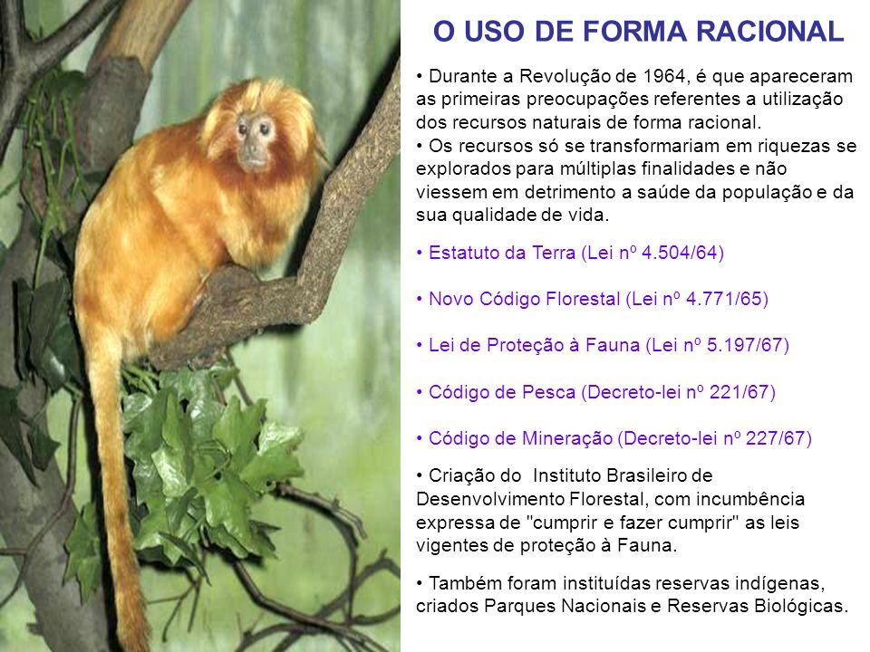 O USO DE FORMA RACIONAL