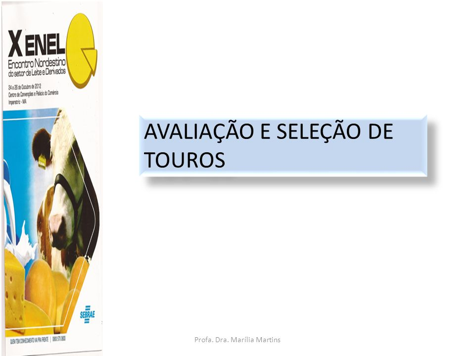 Profa. Dra. Marília Martins