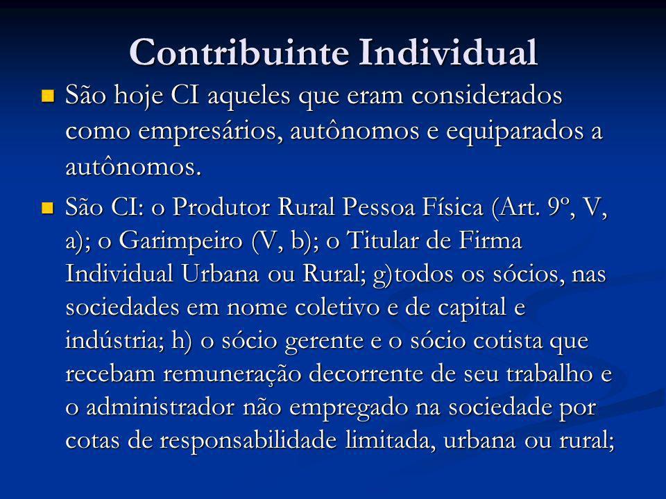 Contribuinte Individual