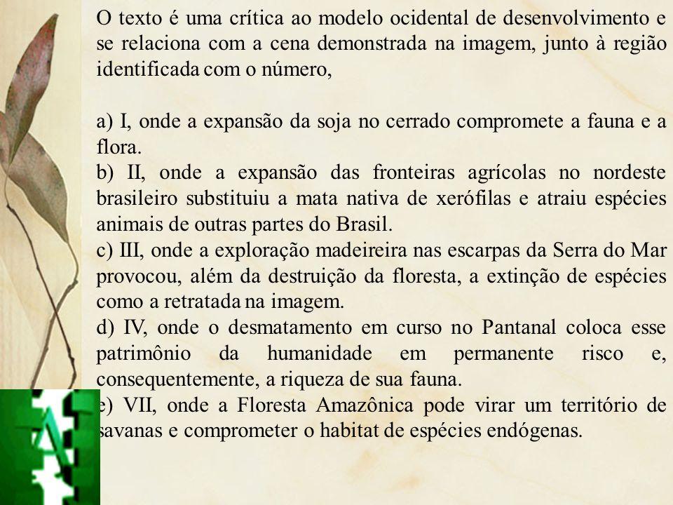 O texto é uma crítica ao modelo ocidental de desenvolvimento e se relaciona com a cena demonstrada na imagem, junto à região identificada com o número,