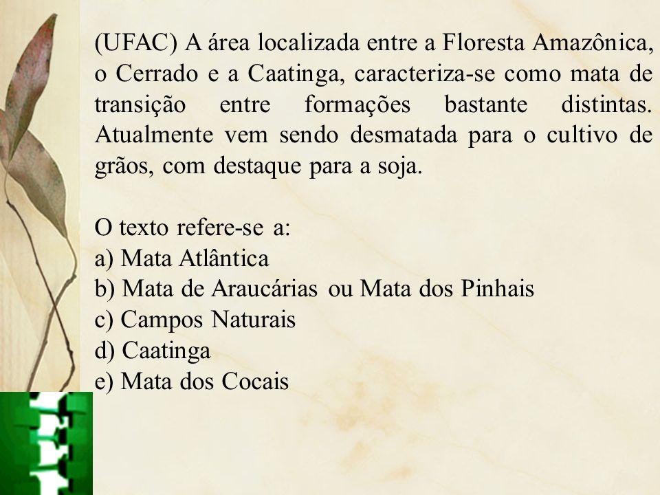 (UFAC) A área localizada entre a Floresta Amazônica, o Cerrado e a Caatinga, caracteriza-se como mata de transição entre formações bastante distintas. Atualmente vem sendo desmatada para o cultivo de grãos, com destaque para a soja.