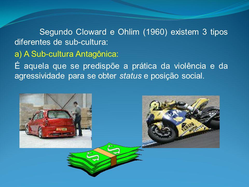 Segundo Cloward e Ohlim (1960) existem 3 tipos diferentes de sub-cultura:
