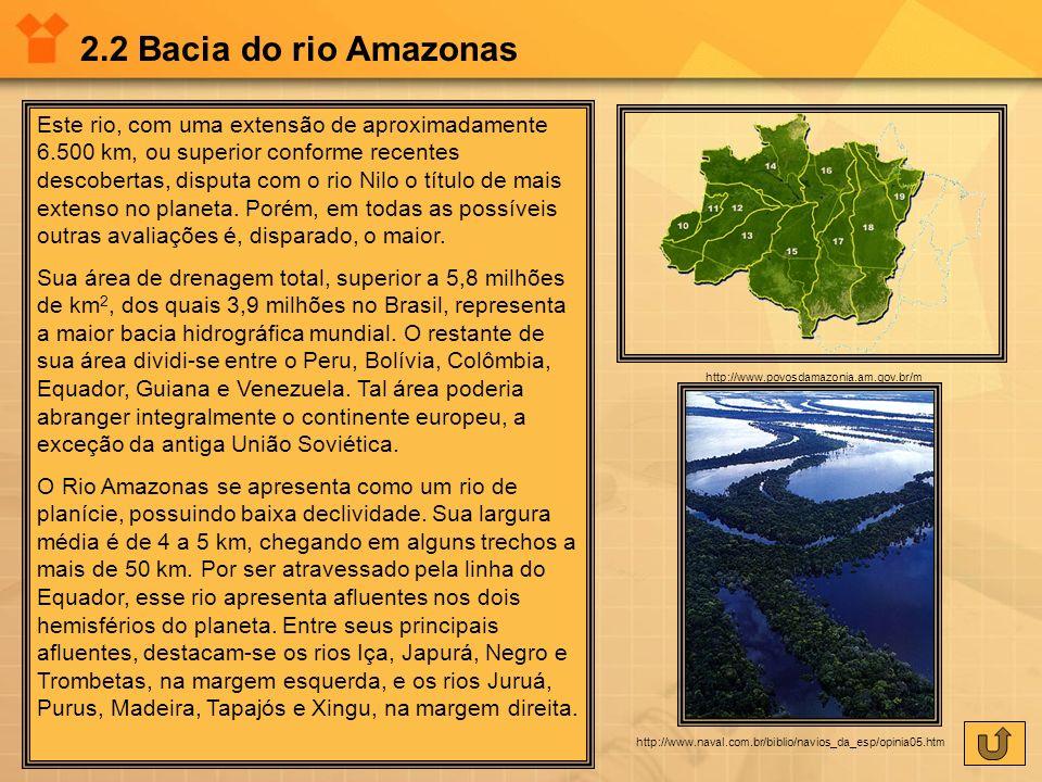 2.2 Bacia do rio Amazonas