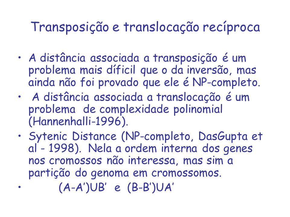 Transposição e translocação recíproca