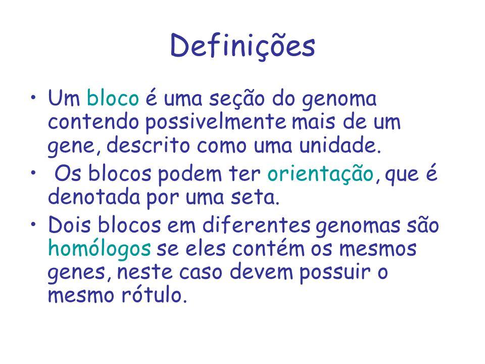 Definições Um bloco é uma seção do genoma contendo possivelmente mais de um gene, descrito como uma unidade.