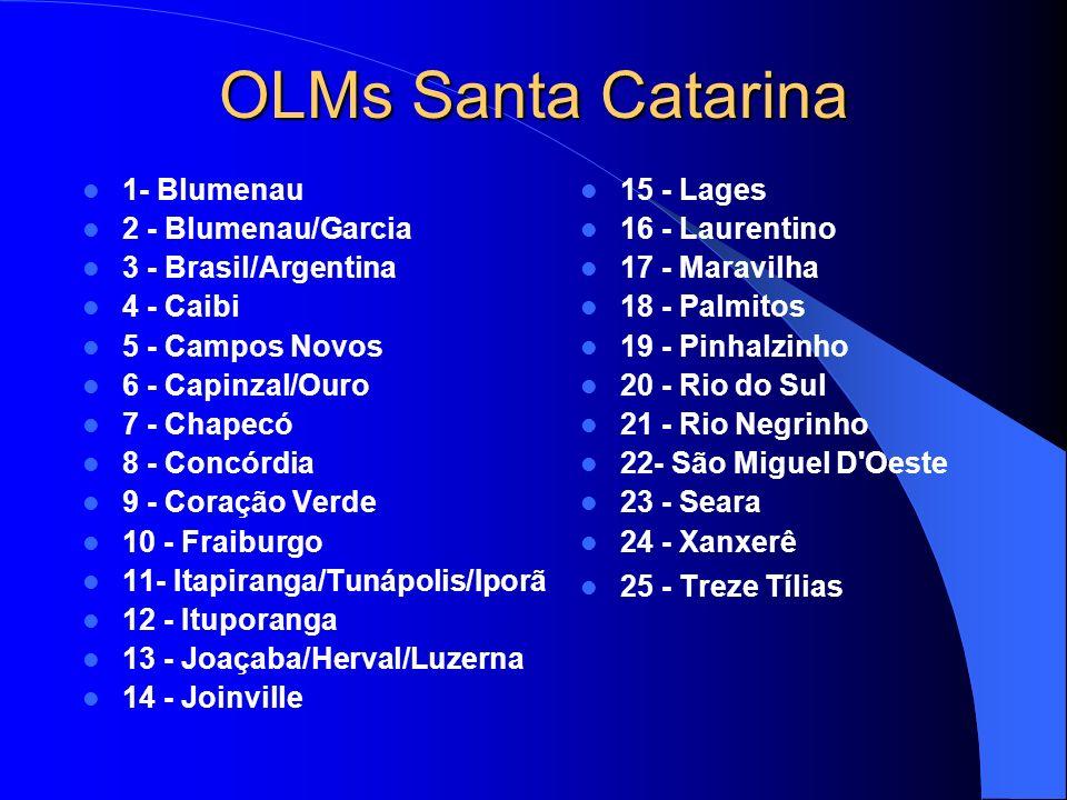 OLMs Santa Catarina 1- Blumenau 2 - Blumenau/Garcia